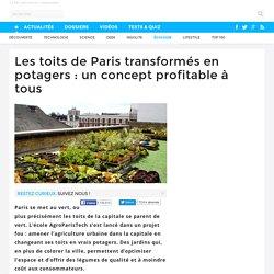 Les toits de Paris transformés en potagers : un concept profitable à tous - 05/12/16