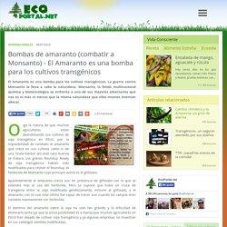 Bombas de amaranto (combatir a Monsanto) - El Amaranto es una bomba para los cultivos transgénicos - Ecoportal.net