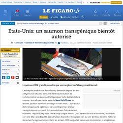 États-Unis: un saumon transgénique bientôt autorisé