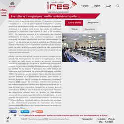 INSTITUT ROYAL DES ETUDES STRATEGIQUES 19/12/12 Les cultures transgéniques : quelles contraintes et quelles opportunités pour leur développement au Maroc ?