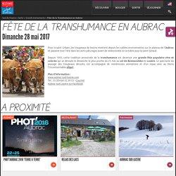Fête de la transhumance en Aubrac, Col de Bonnecombe, Lozère - Sud de France