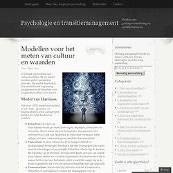 Modellen voor het meten van cultuur en waarden