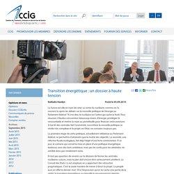 Transition énergétique : un dossier à haute tension - Chambre de commerce, d'industrie et des services de Genève