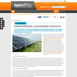 Transition énergétique : les ONG encadrent le projet de loi - Transition énérgétique - Energies