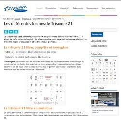 Trisomie 21 libre, trisomie 21 par translocation et trisomie 21 partielle