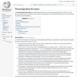 Transmigration des âmes