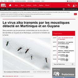 Le virus zika transmis par les moustiques détecté en Martinique et en Guyane
