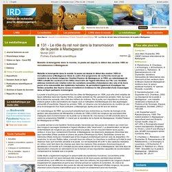 IRD FEV 2001 Le rôle du rat noir dans la transmission de la peste à Madagascar
