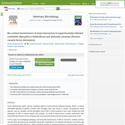 Veterinary Microbiology Volume 172, Issues 1–2, 6 August 2014, No contact transmission of avian bornavirus in experimentally infected cockatiels (Nymphicus hollandicus) and domestic canaries (Serinus canaria forma domestica)