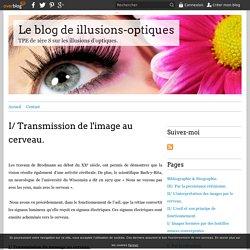 I/ Transmission de l'image au cerveau. - Le blog de illusions-optiques