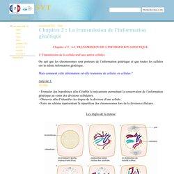 Chapitre 2 : La transmission de l'information génétique - SVT