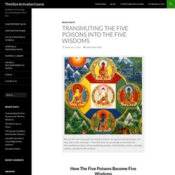 Transmuting The Five Poisons Into The Five Wisdoms