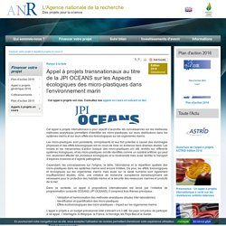 ANR 02/02/15 Appel à projets transnationaux au titre de la JPI OCEANS sur les Aspects écologiques des micro-plastiques dans l'environnement marin