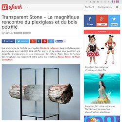 Transparent Stone – La magnifique rencontre du plexiglass et du bois pétrifié