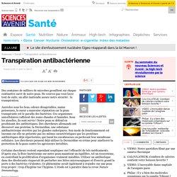 Transpiration antibactérienne - 5 novembre 2001