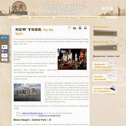 Visite de New York 7 jours, budget, transports, bons plans voyage
