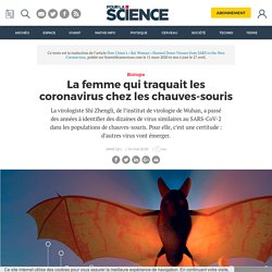 Lafemme qui traquaitles coronavirus chez les chauves-souris