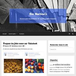 Traquez les fake news sur Fakebook – Doc Martine's