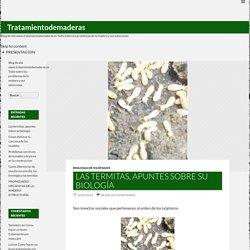 Blog de site www.tratamientodemaderas.es Todo sobre los problemas de la madera y sus soluciones