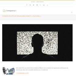 """5 videos FLE pour travailler l'aspect """"culturel"""" - T'enseignes-tu (le FLE) ?"""