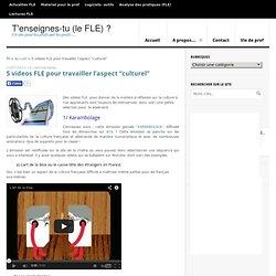 """5 videos FLE pour travailler l'aspect """"culturel"""" - T"""