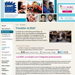 Travailler en ESAT