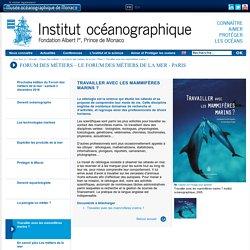 Travailler avec les mammifères marins ? - Institut océanographique - Fondation Albert Ier, Prince de Monaco
