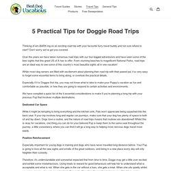 Doggie Road Trips – bestdogvacations