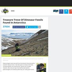 Treasure Trove Of Dinosaur Fossils Found In Antarctica