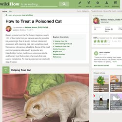 How to Treat a Poisoned Cat: 13 Steps (with Pictures)