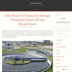 How Water Is Treated In Sewage Treatment Plant? All You Should Know