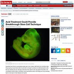 Acid Treatment Could Provide Breakthrough Stem Cell Technique