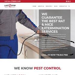 Rats & Mice Treatment Services