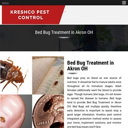 Bed Bug Treatment in Akron OH