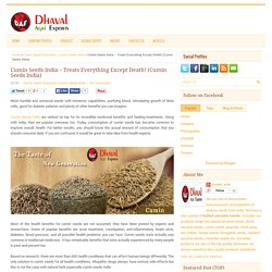 Cumin Seeds India – Treats Everything Except Death! (Cumin Seeds India) ~ Dhaval Agri Exports