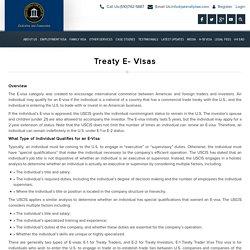Treaty E- Visas, US E1 Visa, US E2 Visa, Type and Requirements of E-visas