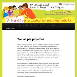 Treball per projectes