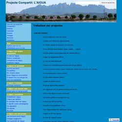 Treballant per projectes - Projecte Compartit: L'AIGUA