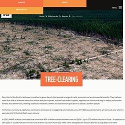 Tree-clearing - WWF-Australia