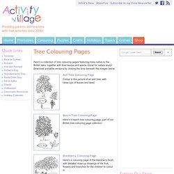 Tree Colouring Pages - Färglägg träd