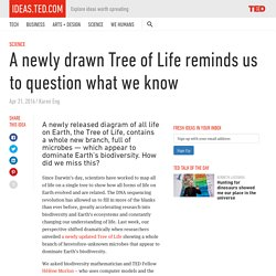 A new Tree of Life reminds us to question what we know