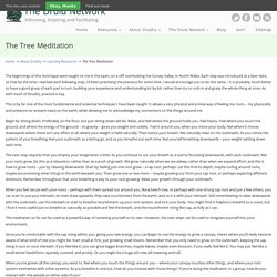 The Tree Meditation - The Druid Network