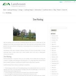Best Tree Planting & Tree Surveys in Surrey, Surrey