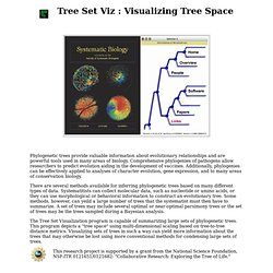Tree Set Visualization Project