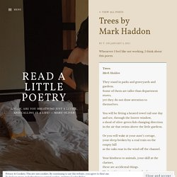 Trees by Mark Haddon – Read A Little Poetry