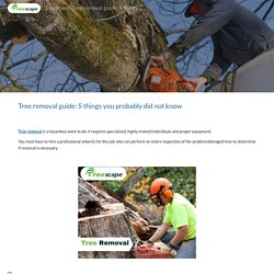 Treescape : Tree removal guide: 5 things you probably did not know