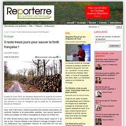 Il reste treize jours pour sauver la forêt française !