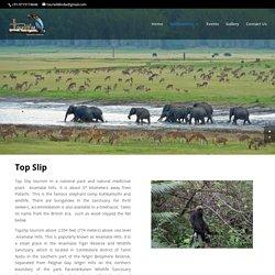 Topslip Tourism ,Topslip tour operator, Topslip ooty,anaimalai,coimbatore
