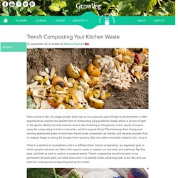 Trench Composting Your Kitchen Waste