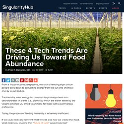 These 4 Tech Trends Are Driving Us Toward Food Abundance